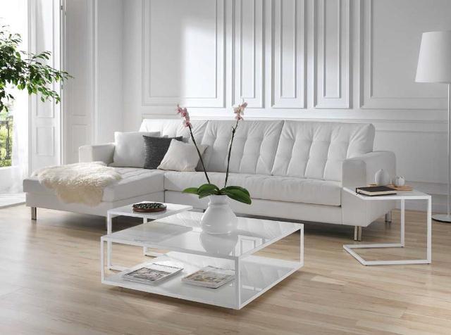 Decoración interiores | plantas